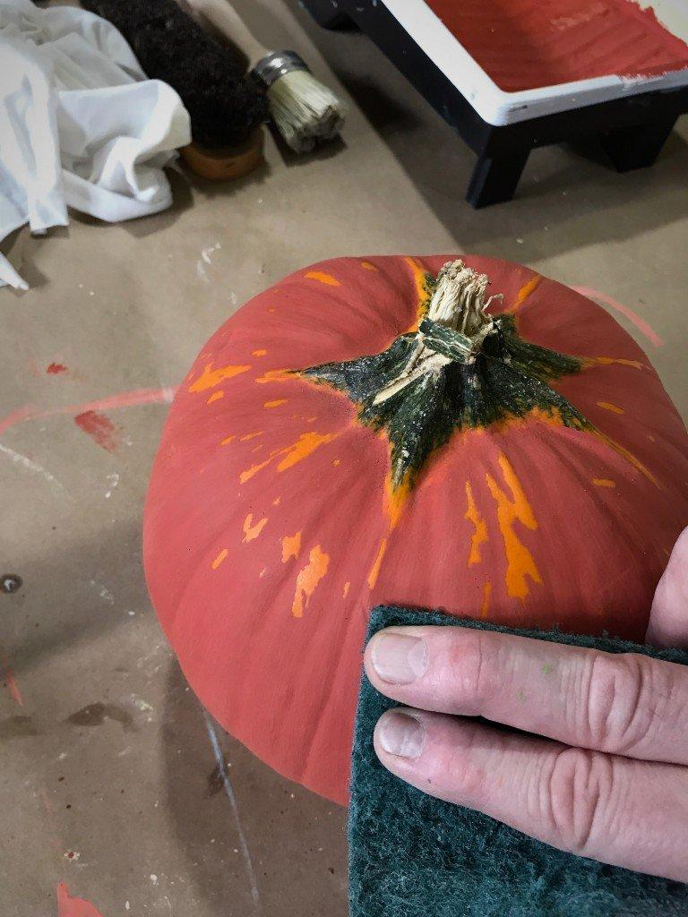 Pumpkin distress Autumn 1