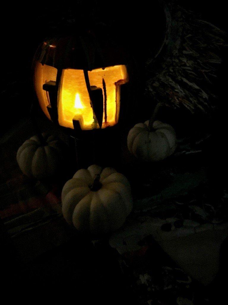 Pumpkin light FAT 1